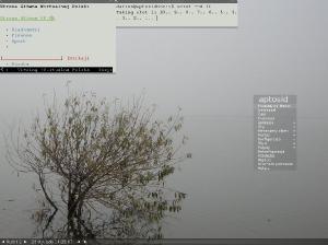 Wszechobecna mgła i Fluxbox