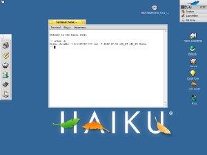 HAIKU R1/Beta2